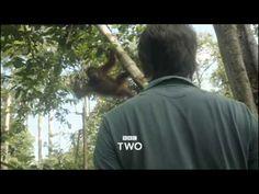 Wonders of Life BBC Trailer