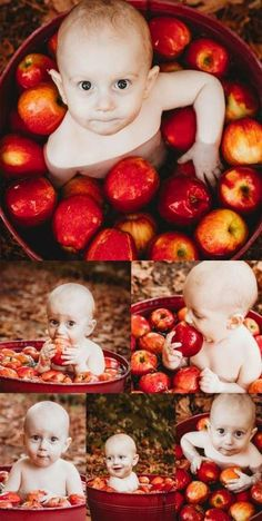 Baby bobbing for apples Fall baby photo ideas Cute baby picture ideas Outdoor baby pictures Family photography Oregon based photographer Baby bobbing for apples Fall baby photo ideas Cute baby picture ideas Outdoor baby pictures Family nbsp hellip Fall Baby Pictures, Baby Boy Photos, Halloween Baby Pictures, Fall Baby Pics, Baby Pumpkin Pictures, Fall Pics, Holiday Pictures, Fall Photos, Girl Baby Showers