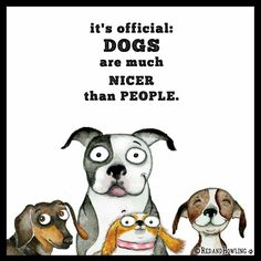 Dog Quotes Love, Dog Quotes Funny, Funny Dogs, Funny Humor, I Love Dogs, Puppy Love, Cute Dogs, Diy Pet, Animals And Pets