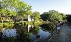 Lâcher de truites dans les lacs et étangs