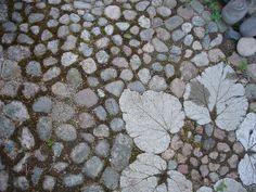Varjoyrtin puutarha: toukokuuta 2008 > Kiveys luonnonkivistä ja raparperinlehtilaatoista.