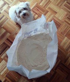 2 años de #PanComido Un primer saco de harina fue comprado para sortear las escasez.  A poco tiempo de quedar en la ruina empezó una idea de poca sensatez.  No nos imaginamos que esté proyecto nos diera la salida. Hoy estamos plenos de afectos y con una misión de por vida.