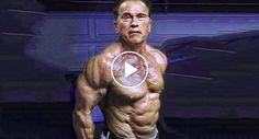 Arnold schwarzenegger blueprint trainer day 4 physique arnold aos 69 anos arnold schwarzenegger prova que a idade s um nmero httpfuncozaos 69 anos arnold schwarzenegger prova idade so um numero malvernweather Image collections