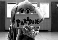 i <3 coldplay  PaRaDiSe s2 s2 s2