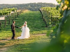 wining - Vue Photography Bride and Groom wedding portraits through the vineyard of Montaluce