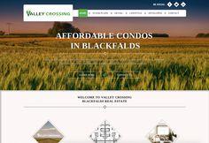 responsive web design & development