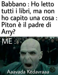 Harry Potter Images, Harry Potter Tumblr, Harry Potter Anime, Harry Potter Love, Harry Potter Fandom, Verona, Harry Hermione Ron, Saga, Fandom Memes