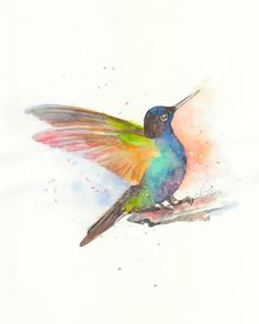 Colorful Hummingbird----Original watercolor print  No,22. $17.00, via Etsy.