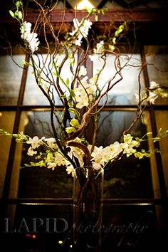 White dendroium orchids intertwined in curly willow branches centerpiece