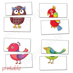 complete the birds  flash card  printable PDF by paperonly on Etsy, $2.99