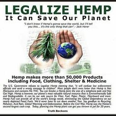 #wakeup #truth  Visit www.cchi2016.org @Regrann from @420activist -  Hemp hemp…