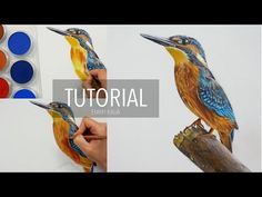 Color Pencil Drawing Tutorial How to draw, color a Bird with PanPastel and Colored pencils Pastel Pencils, Coloured Pencils, Pencil Drawing Tutorials, Pencil Drawings, Painting Tutorials, Painting Collage, Painting & Drawing, Drawing Birds, Cartoon Sketch Drawing