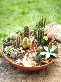 201-best-mini-gardens-container-gardens-fairy-gardens-images-on-pinterest-succulents-garden-fairies-garden-and-gardening-mini-cactus-garden-ideas-mini-cactus-garden-pinterest-mini-cactus-garden-for-sa.jpg (616×821)