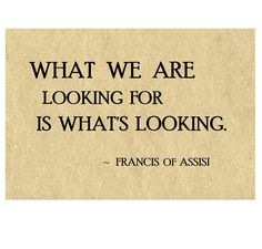 Quote from St. Francis of Assisi Francis Of Assisi, St Francis, Spiritual Awakening Quotes, Spiritual Teachers, Teacher Quotes, Tantra, Jenni, Bible Quotes, Consciousness