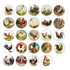 Chicken Hen Rooster Cabinet Drawer Knobs Pulls Farmhouse Country Rustic Price is for One Knob Country Cupboard, Peter Rabbit Nursery, Cabinet And Drawer Knobs, White Ornaments, Tree Silhouette, Circle Shape, Arts And Crafts Projects, Knobs And Pulls, Collage Sheet