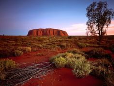 Australia my-future-travels