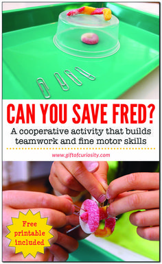Can You Save Fred? Kids will love this cooperative activity that builds teamwork, planning, communication, and fine motor skills. #freeprintable #giftofcuriosity #handsonlearning || Gift of Curiosity