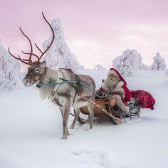 Father Christmas, Christmas Love, Winter Christmas, Vintage Christmas, Christmas Scenes, Christmas Pictures, Snow Holidays, Lapland Holidays, Christmas Aesthetic