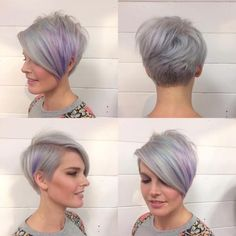Lavender Pixie Bob (minus the lavender haha)