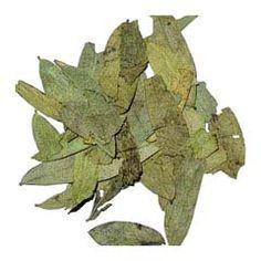 Acabar con la celulítis con nueve trucos caseros ¡y gratuitos! 8-Después de cenar, toma una infusión de hojas de sen.