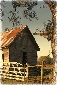 "Way Down South:  ""I cannot endure to waste anything as precious as autumn sunshine by staying in the house. So I spend almost all the daylight hours in the open air.""  ~ Nathaniel Hawthorne"