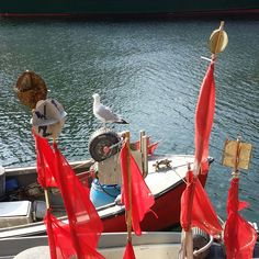 Fischerboot am Alten Strom