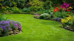 If you need Lawn Care Maintenance or Landscape Services and live in Cape Carteret, NC, Call Elks Lawn Care & Landscaping for a free estimate. Landscaping Supplies, Landscaping Company, Backyard Landscaping, Landscape Services, Landscape Plans, Landscape Design, Mowing Services, Lawn Care Companies, Bermuda Grass