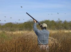 Wing shooting -- the most fun you can have with your clothes on!