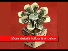Money origami flower in flowerpot...
