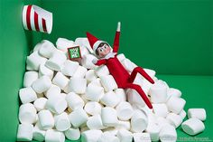 Scout Elves, Ideas for Scout Elves, Ideas for Scout Elves, Everything you need to make Elf on the Shelf FUN and EASY again! Tons of creative ideas and printables to make it effortless to make magical Christmas memories! 25 Easy Elf on the Shelf Ideas The Elf, Elf On The Shelf, Elves At Play, Mini Palm Tree, Kids Punch, Elf Pets, Magical Christmas, Christmas Stuff, Xmas