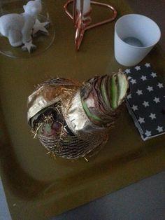 Wrapped amaryllis on my table