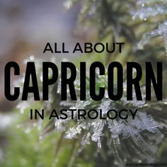 CAPRICORN — Canary Quill Astrology