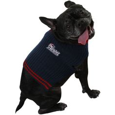 New England Patriots Dog Sweater ** Startling review available here  : Costumes for dog