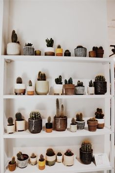 Best Photos cactus plants decoration Tips Succulents and also cactus are the excellent dwelling interior decoration intended for minimalists and also t Deco Cactus, Cactus Decor, Plant Decor, Cactus Art, Cactus House Plants, Passion Deco, Plants Are Friends, Plant Aesthetic, Room With Plants