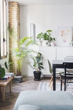 994 Best Plant-Filled Homes images in 2020 | Plants, Home ... House Filled With Plants on bathroom filled with plants, bedroom filled with plants, house full of plants, house books,