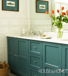 bold color on vanity