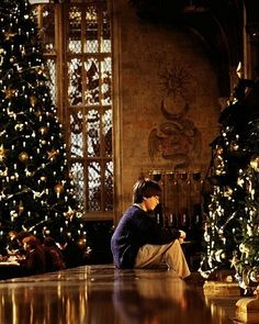 Christmas at Hogwarts. oh how i wish hogwarts was real. Harry Potter World, Natal Do Harry Potter, Harry Potter Navidad, Harry Potter Weihnachten, Mundo Harry Potter, Harry Potter Hermione, Harry Potter Love, Harry Potter Tumblr, Hogwarts Christmas