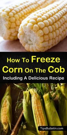Find out how to freeze corn on the cob! If you're used to freezing your corn without blanching, you'll be amazed at how tasty your frozen corn can be. Get the taste of summer all year long! Freezing Fresh Corn, Freezing Vegetables, Canning Vegetables, Veggies, Canning Corn, Canning Recipes, Kitchen Recipes, Kitchen Hacks, Desserts