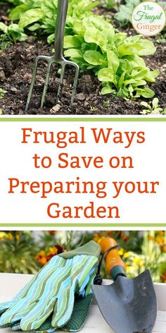 It is possible to create a beautiful garden on a budget. These simple and easy ways to save money are perfect for frugal beginners. Use these tips for flower and vegetable gardens or even just for landscaping.#gardening #gardeningtips #gardenideas #flowergardeningforbeginners