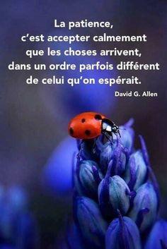 """""""La patience, c'est accepter calmement que les choses arrivent, dans un ordre parfois différent de celui qu'on espérait."""" David G. Allen"""