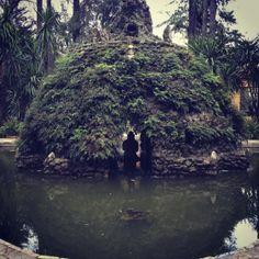 En los Reales Alcázares de Sevilla, no dejo de sorprenderme...  En los jardines, en medio de un estanque, una instalación cubierta de helechos me resulta bellamente misteriosa...