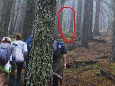 ஜ ۩۞۩ ஜ ஜ ۩۞۩ ஜ Azulestrellla: ● Turisté našel tajemný návštěvník.