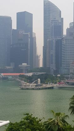 if you are in Singapore, you need to see this statue as it is the countries figurehead