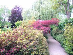 Jardines de Monet - Francia