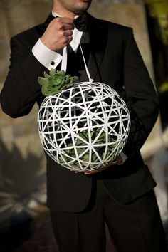 White ball and succulents