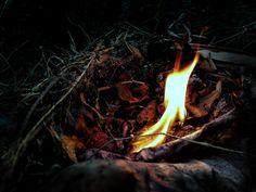 team building bonfire @LB