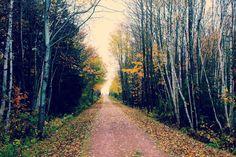 biking trail Bike Trails, Biking, New Homes, Country Roads, Bicycling, Motorcycles, Cycling