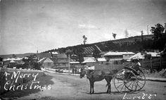 Image result for cygnet tasmania homes 20s 1930 Tasmania, Vietnam, Australia, History, Places, Homes, Outdoor, Image, Live