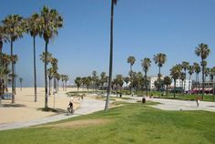 Venice Beach  Top 10 Best City Beaches in the World  http://www.traveloompa.com/top-10-best-city-beaches-in-the-world/