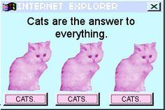 #pastel goth #cats